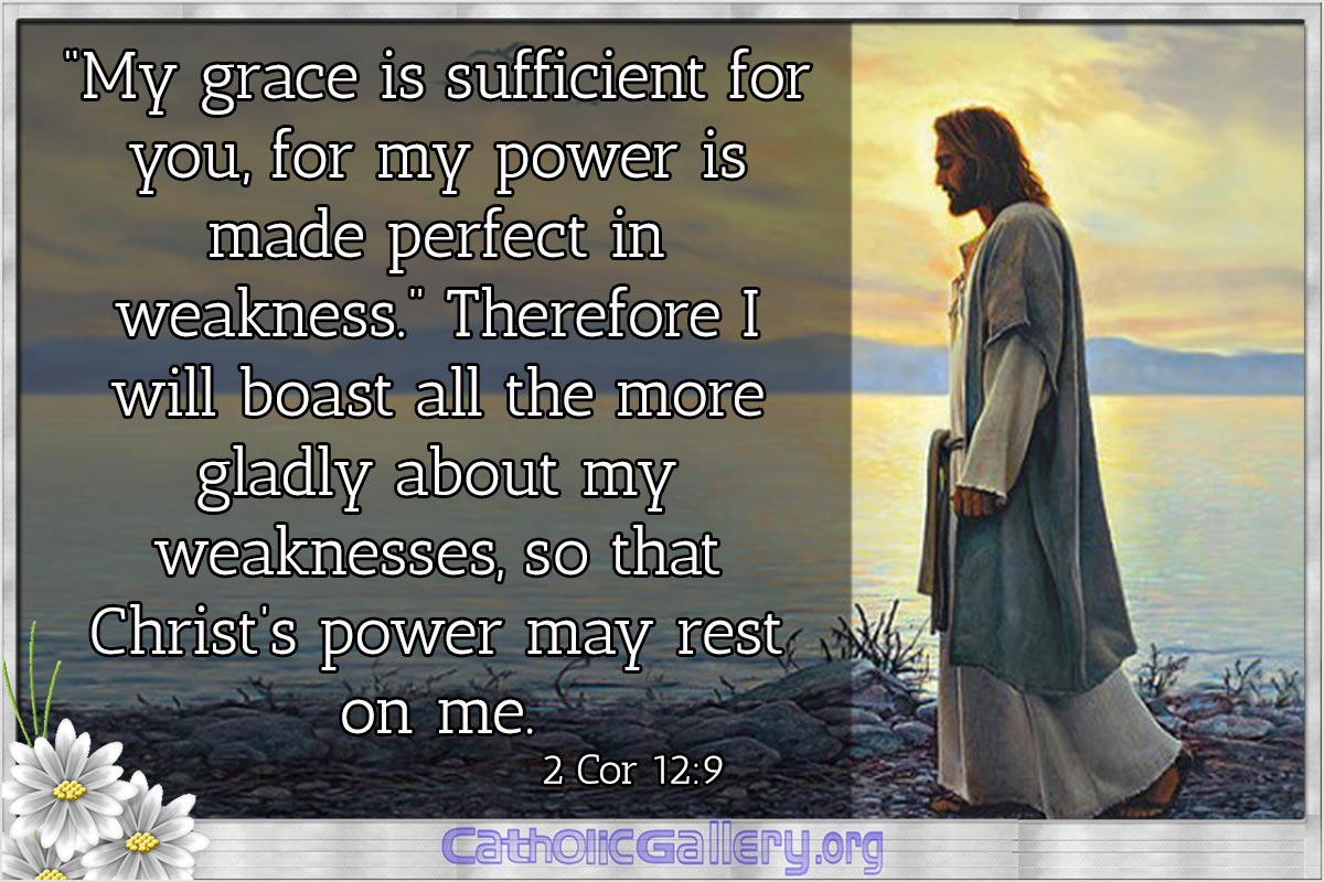 Bible Quotes Best Quotes From Bible Pictures  Page 1  Catholic Gallery