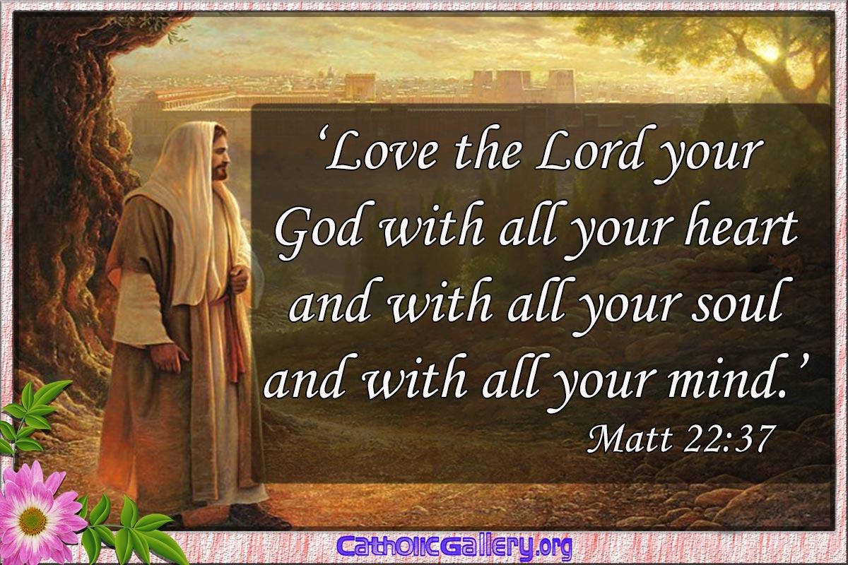 Biblical Love Quotes Love Quotes Catholic Bible  Catholic Bible Quotes Love Quotesgram
