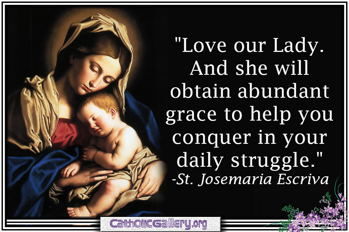 Catholic Quotes On Love Quotes About Mary Pictures  Page 1  Catholic Gallery